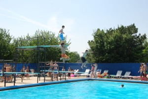 DSRC-Diving-boards-300x201